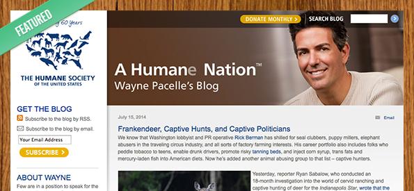 A_humane_nation