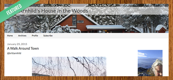 Britt-Arnhild's House in the Woods
